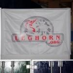 leghorn (1)
